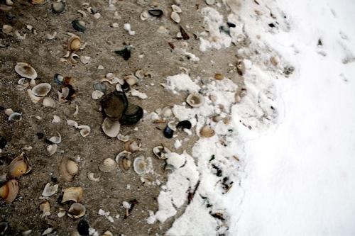 snow-beach-17.jpg