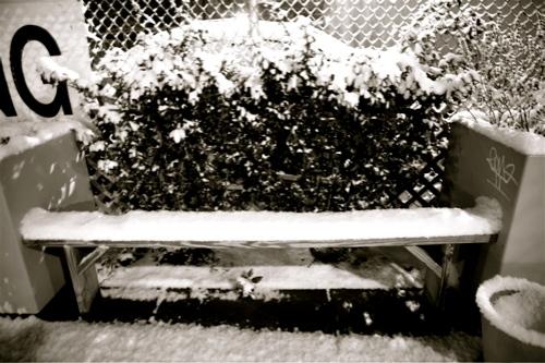 snow597.jpg